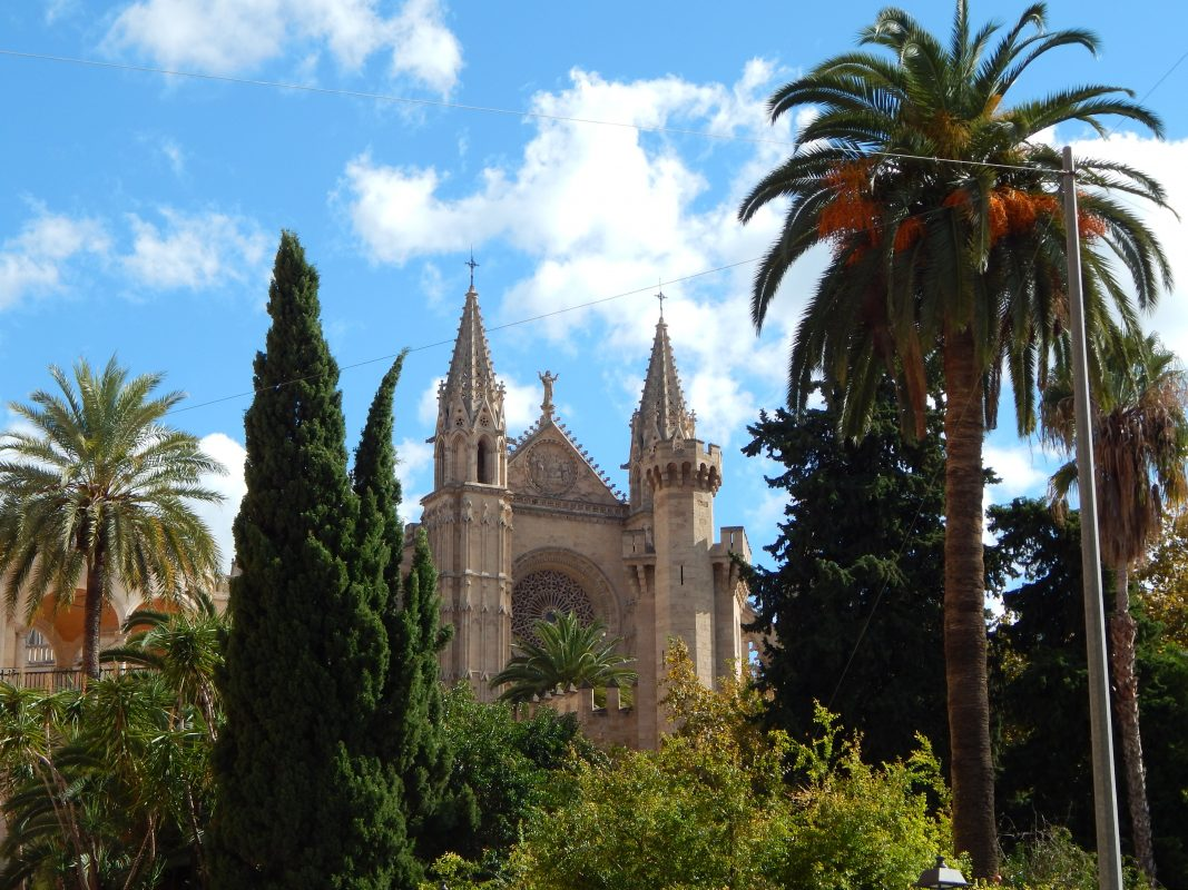 guided tour palma cathedral